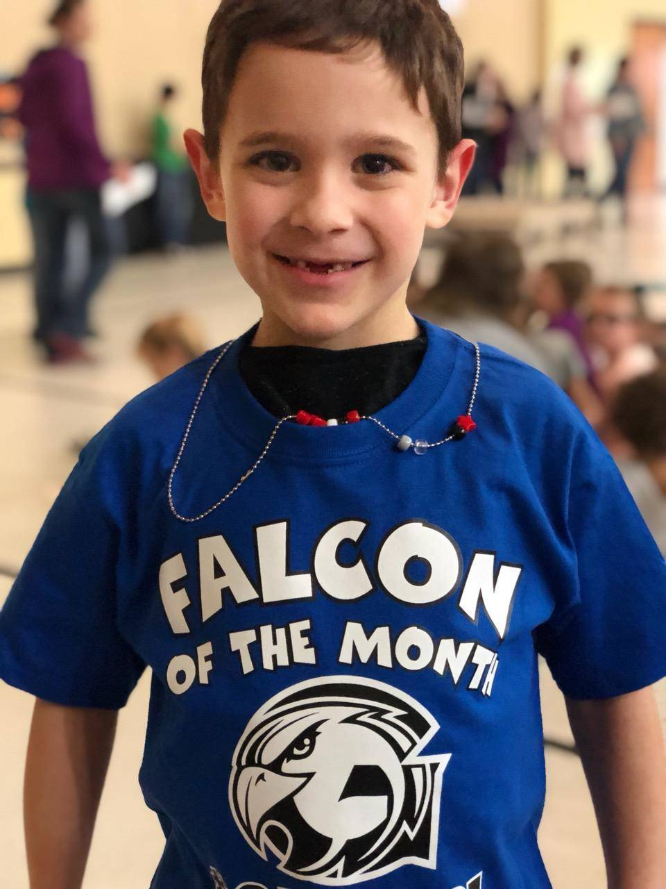 Falcon of the Month